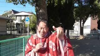第41代持統天皇>(女帝)春すぎて 夏来にけらし 白妙の 衣ほすてふ 天...