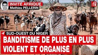 Niger : « L'aggravation de la crise du pastoralisme nourrit le recrutement du banditisme »