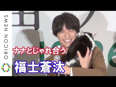 """福士蒼汰、映画中の猫""""ナナ""""を抱いてじゃれ合う 映画『旅猫リポート』完成記念カーペットセレモニー"""