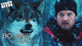 Bourne Legacy | The Wolf Scene | Jeremy Renner