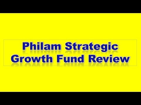 PHILAM ASSET MANAGEMENT INC: Philam Strategic Growth Fund Review