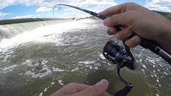 SUSQUEHANNA RIVER DAM Smallmouth Bass Fishing