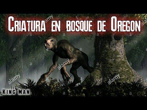 Criatura extraterrestre con largos brazos captada en bosque de Oregon EEUU