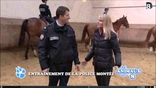 Brigade Équestre La Courneuve (93) Emission Les Animaux de la 8 (Direct 8) déc 2012