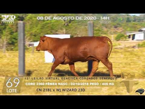 LOTE 69 CORO 2360