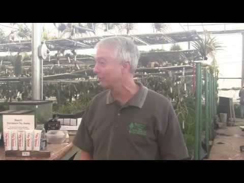 Paul Isley - Rainforest Flora, Inc. - Talks To Long Beach Ga