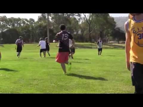 Video 395