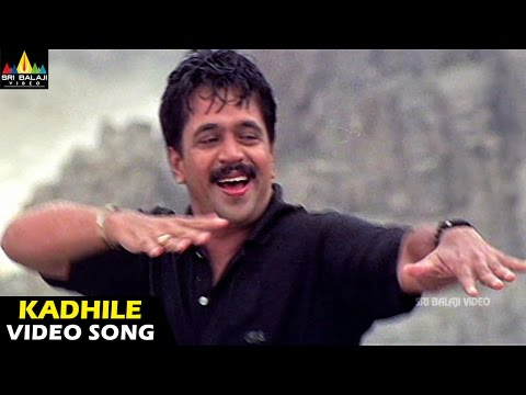 Rhythm Songs | Kadhile Nadiche Video Song | Arjun, Jyothika, Meena | Sri Balaji Video