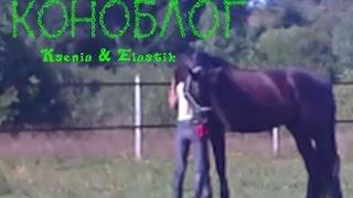 КОНОБЛОГ/Ksenia&Elastik/Обучение трюкам