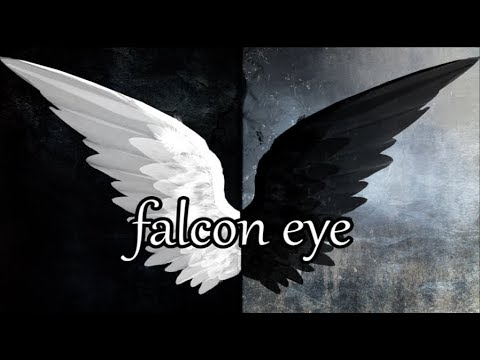 Falcon Eye - Off Bloom | Lyrics