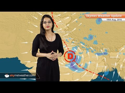 Weather Forecast for Aug 19: Heavy rains in MP and Chhattisgarh; Monsoon rain in Delhi, Lucknow