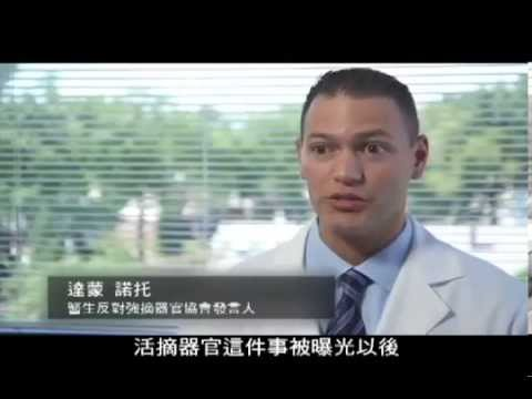 Killed for Organs China s Secret State Transplant Business 中文字幕版