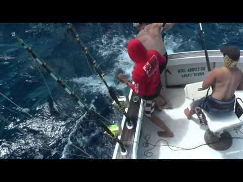 Tonga Fishing Trip 2014