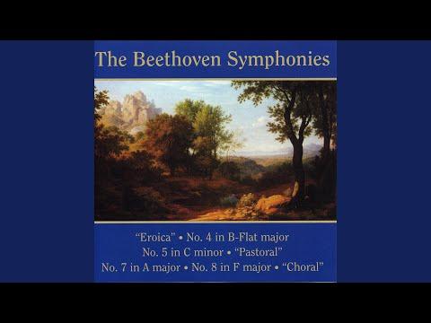 Triple Concerto in C Major, Op. 56: III. Rondo Alla Polacca