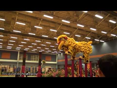 Hong Kong Open Championship - Chinese Lion Dance (2014)