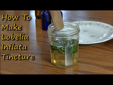 How To Make Lobelia Tincture Youtube