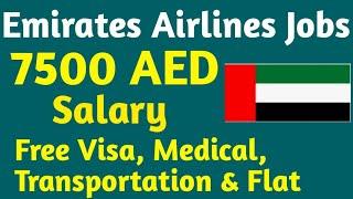 Emirates Group Careers in Dubai 2021, 6000 Dirham Plus Salary, Dubai Airline Jobs