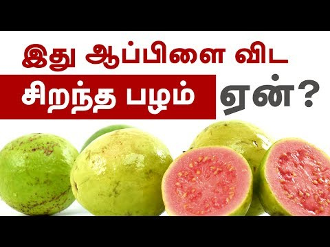 Guava fruit Benefits - Heart Healthy, Weight Loss Friendly - Tamil Health Tips