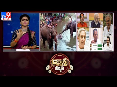AP People Praising CM Jagan || Unidentified People Killed Pregnant Elephant: iSmart News - TV9