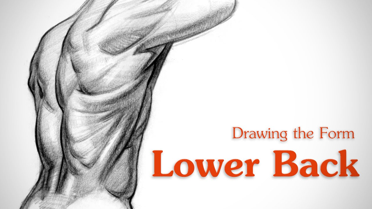 How to Draw Lower Back Muscles - Form - YouTube