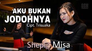 Download lagu Shepin Misa - Aku Bukan Jodohnya