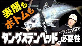 【アジング】表層もボトムも!タングステンヘッドの必要性~脇田政男(ワッキー)