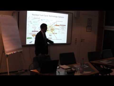Fukushima and the Debate on Japan's Nuclear Future