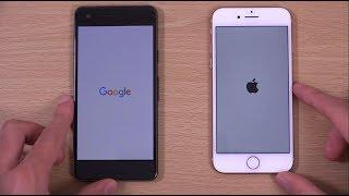 Google Pixel 2 vs iPhone 8 - Speed & Camera Test!