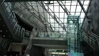 20170717 【2017蘭陽國際低音提琴夏令營】蘭博快閃之磁性琴音好迷人影片縮圖