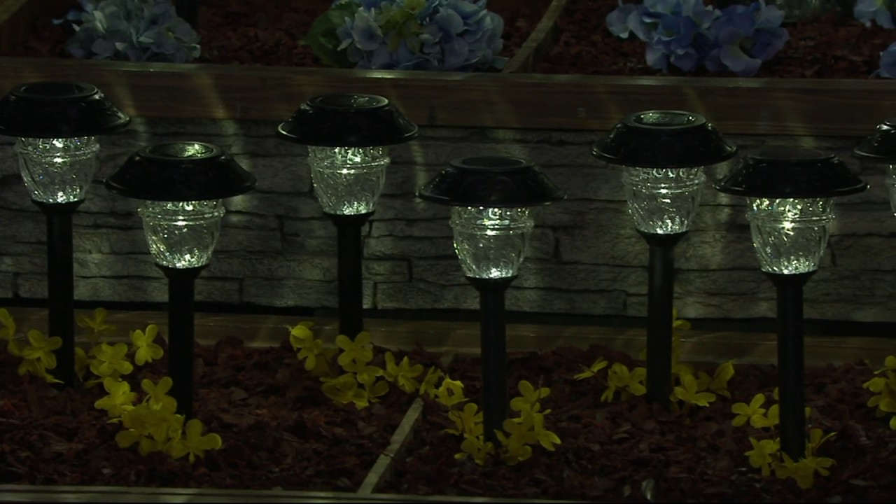 duracell set of 8 solar pathway lights with color lock on qvc - Solar Pathway Lights