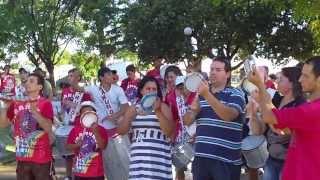 Ensayo GRES Viramundo 2014