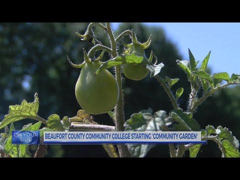 Beaufort County Community College Starting 'Community Garden'