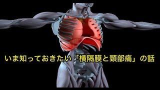 筋膜はがし 筋膜リリース いま知っておきたい「横隔膜と頸部痛」の話