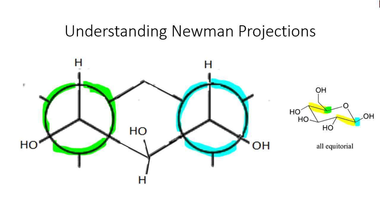 Org Chem Quick Reference On Cyclohexane Newman