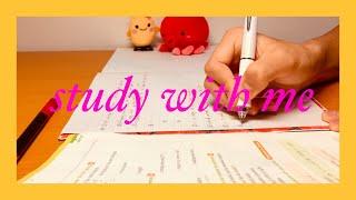 勉強動画30分用【 study with me 】