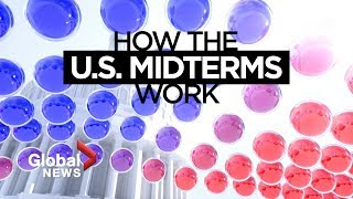 U.S. midterm elections: How do they work?