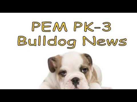 2018-12-14 PEM PK-3 Bulldog News