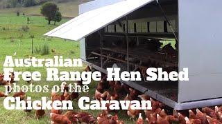 Australian Free Range Hen Shed Photos Of The Chicken Caravan