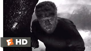 The Wolf Man (1941) - First Kill Scene (5/10) | Movieclips