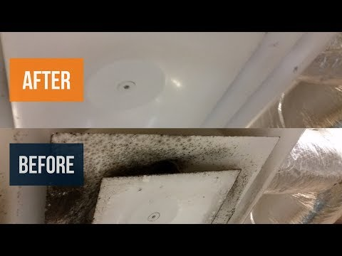 How To Clean Mold From AC Vents: Cleaning Mold From HVAC Vent