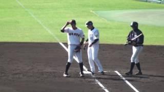 プロ野球 12球団合同トライアウト Tigers Time 阪神タイガース 坂 克彦 ...