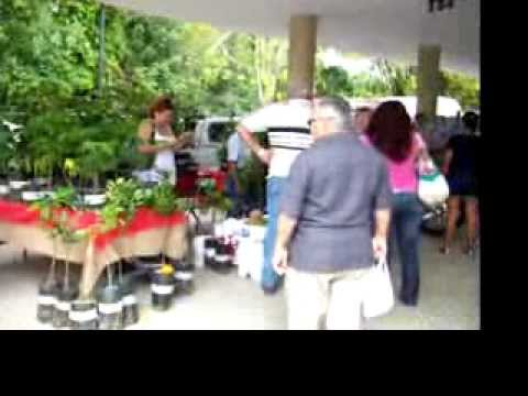 San sebastian puerto rico pulguero market youtube for Turismo interno p r