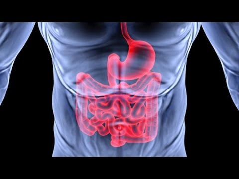 Get An Extremely Healthy Digestive System Fast! Subliminal Binaural Beat Hypnosis Theta Meditation