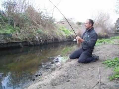 Fishing For Chub And Barbel With Lures