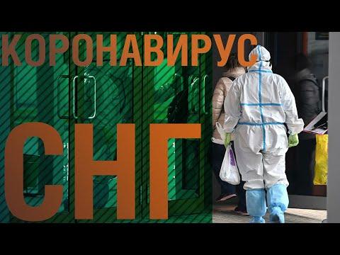Глава ВОЗ: Ближайшие месяцы пандемии будут очень трудными. Коронавирус в СНГ от 23.10.2020