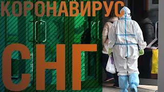 Глава ВОЗ Ближайшие месяцы пандемии будут очень трудными Коронавирус в СНГ от 23 10 2020