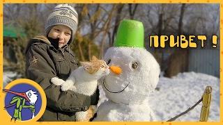 Делаем снеговика. Рыжик, Китти и Ночка помогают нам