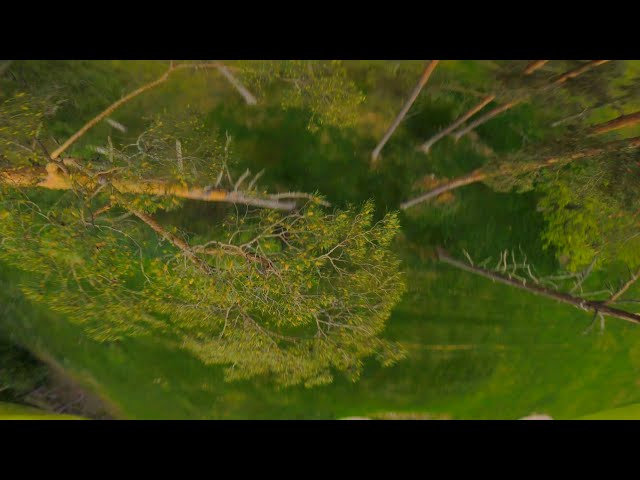 Last 2min Of Goldenhour | Fpv Drones | Raw Flight
