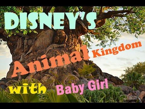 Disney's Animal Kingdom with baby girl