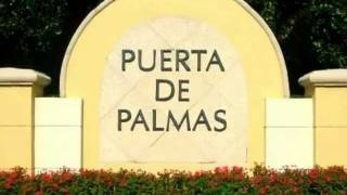 Puerta de Palmas - 888 Douglas Road, Coral Gables, FL, 33134